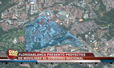 Floridablanca presentó proyectos de movilidad al gobierno nacional